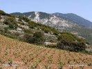 Národní park Ainos (GR)
