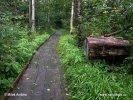 Národní park Dalby Soderskog (S)
