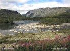 Národní park Dovrefjell (N)