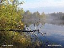 Národní park Lemmenjoki (F)