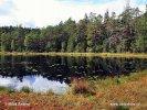 Národní park Norra Kvill (S)