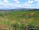 Národní park Northumberland (UK)