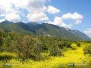 Národní park Oiti/Itis (GR)