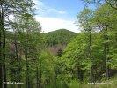 Národní park Risnjak (HR)
