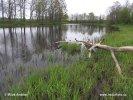 Národní park Soomaa (EE)