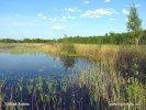Poleský národní park (PL)