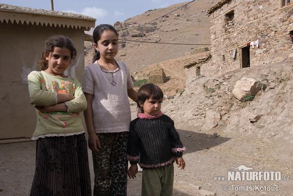 Lidé kurdové foto č 10063