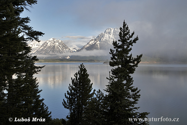 Grand Teton, Jezero Jackson (Grand Teton, 2 USA-Wyoming)