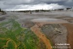 Yellowstone, NP (<em>Wyoming, USA</em>)