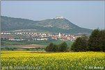 Jižní Morava (JM)