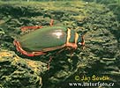 Potápník vroubený (Dytiscus marginalis)