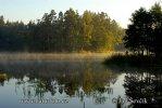 Rybník Nové Jezero (Fishpond)