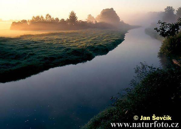 Nová řeka - foto č. 2212