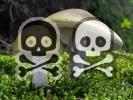 Otrava jedovatými houbami - typy otrav z hub